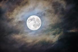 Photo of Luna bugiarda
