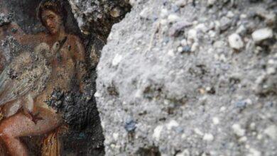 Photo of Leda e il cigno, una storia di passione fra le mura di Pompei