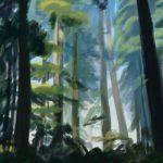 Ambientazione di foresta