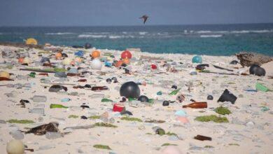 Photo of #stopplasticpollution: l'estate è finita, ma la plastica no. Il Mediterraneo ha bisogno di noi!