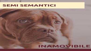 Photo of Semi semantici: Inamovibile