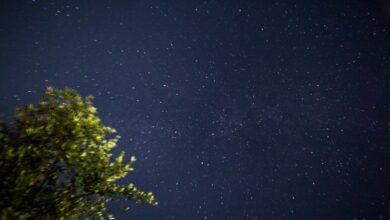 Photo of Il cielo sopra il Cilento