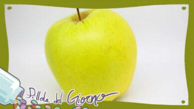 Photo of Accetta questa mela ed amami
