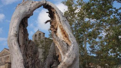 Photo of Monumento in memoria di Angelo Vassallo
