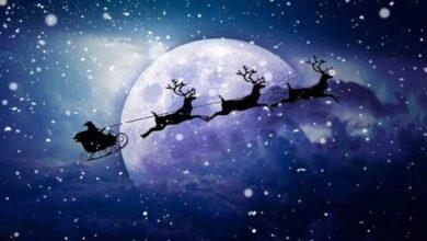 Photo of Caro Babbo Natale, vorrei… conoscere le tue origini