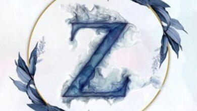 Photo of zzz.crew: l'arte riparte dai social, per tutti