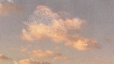Photo of La pareidolia: quando c'è una tartaruga nel cielo ma non hai bevuto