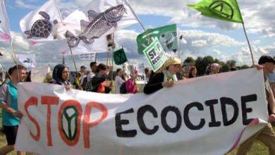 Photo of Gink: maternità o ecologia?