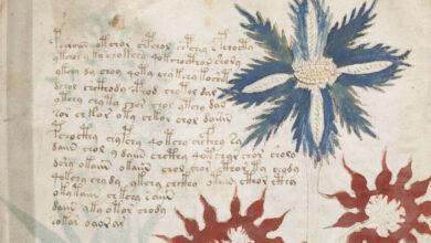 Photo of Il manoscritto Voynich, un mistero incomprensibile