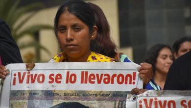 Photo of Il dolore delle Rastreadoras, nient'altro che un triste sottofondo al turismo messicano