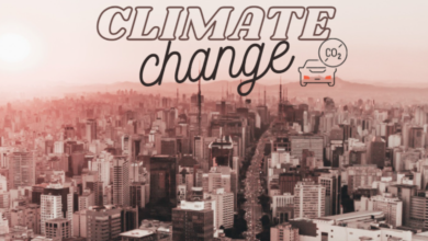 Photo of Riscaldamento globale: come l'uomo sta uccidendo il Pianeta