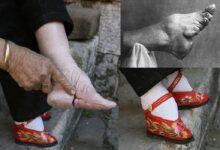 Photo of L'antica pratica del loto d'oro