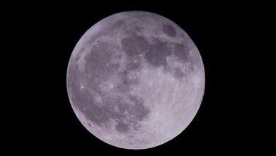 Photo of Sport lunari. Guida per atleti in tuta spaziale