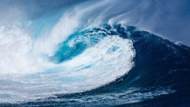 Photo of 5 curiosità sull'oceano e le sue acque
