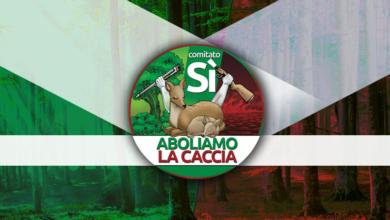 Photo of Referendum per l'abolizione della caccia